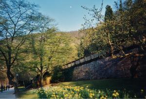 Gardens at Heidelberger Schloss