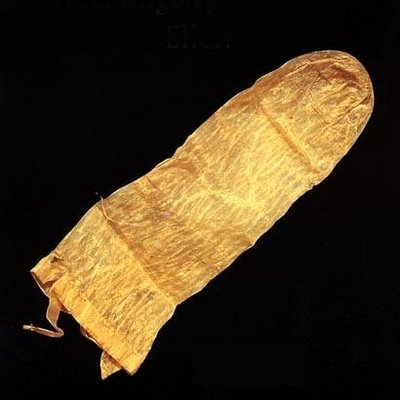 Figure 1. An ancient condom, oldest in the world. This reusable condom is from 1640 and is completely intact, as is its original users' manual, written in Latin. The manual suggests that users immerse the condom in warm milk prior to its use to avoid diseases. The antique, found in Lund in Sweden, is made of pig intestine.